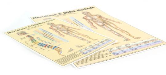 DIN A3 - Poster / DE - Meridiane & DORNmethode
